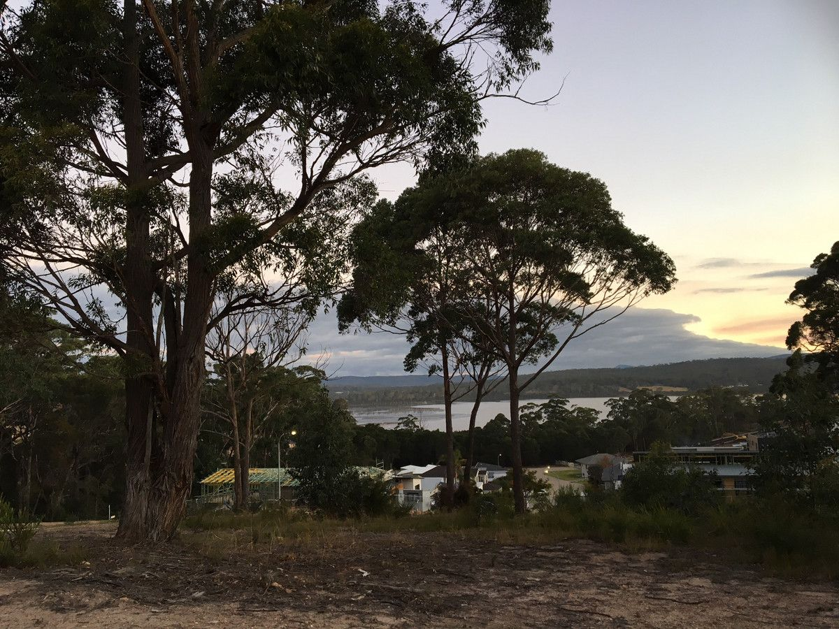 Lot 235 Bellbird Ridge, Merimbula NSW 2548, Image 1
