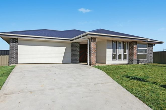 Picture of 163 North St, WEST KEMPSEY NSW 2440