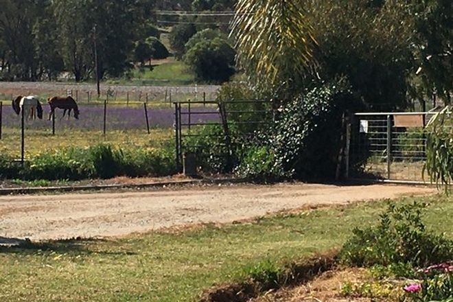 Picture of 416 Spencers Brook Rd, MULUCKINE WA 6401