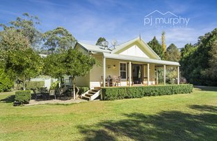 Picture of 1957 Great Alpine Road, Harrietville VIC 3741