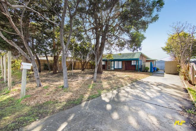 Picture of 19 Wattletree Avenue, ST LEONARDS VIC 3223