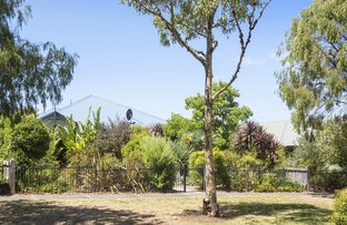 Picture of 3 Ficus Lane, Margaret River WA 6285