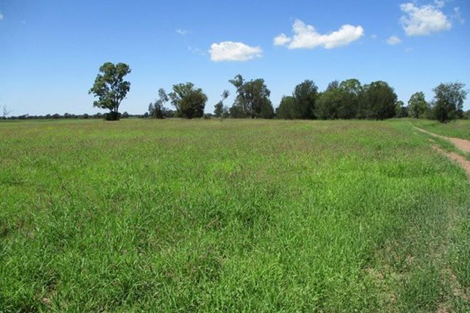 Picture of 3952 ACRES FARMING AND CATTLE, TARA QLD 4421