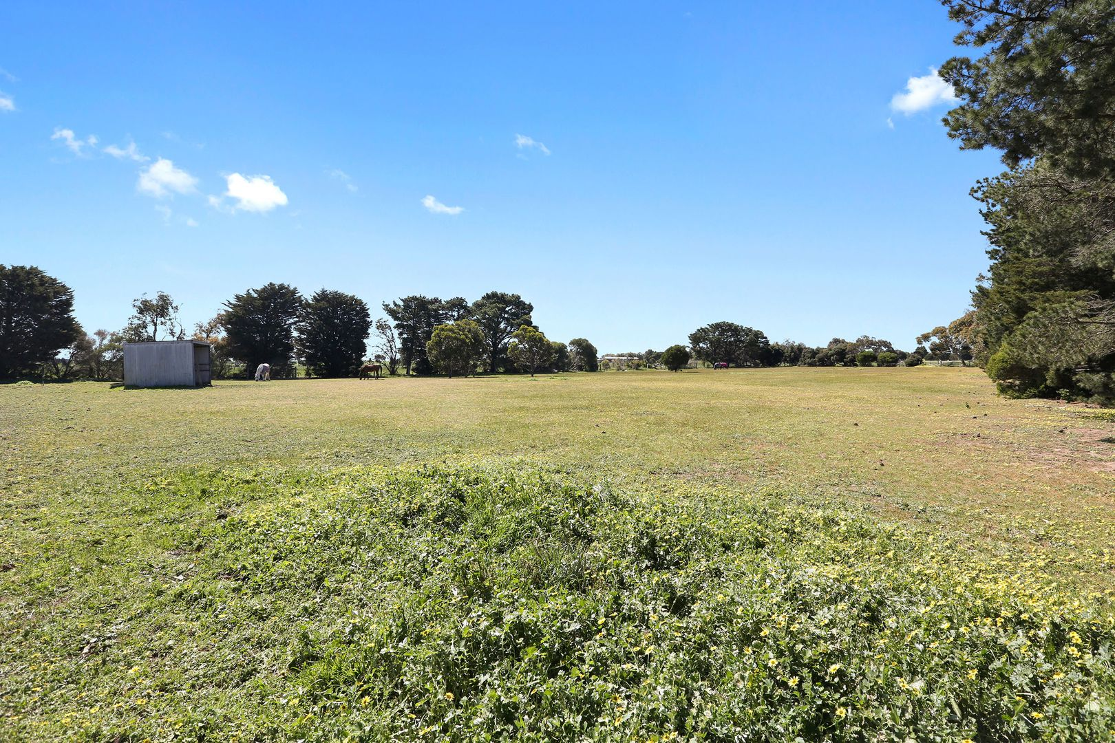 750 Anakie Road, Lovely Banks VIC 3213, Image 2