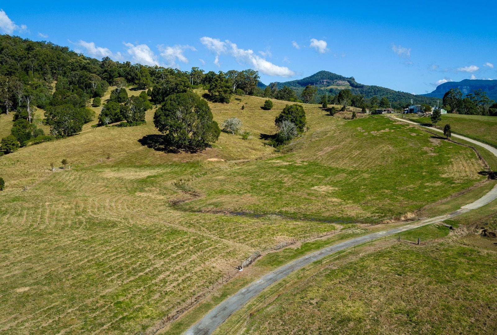 829 Tallebudgera Creek Road, Tallebudgera Valley QLD 4228, Image 1