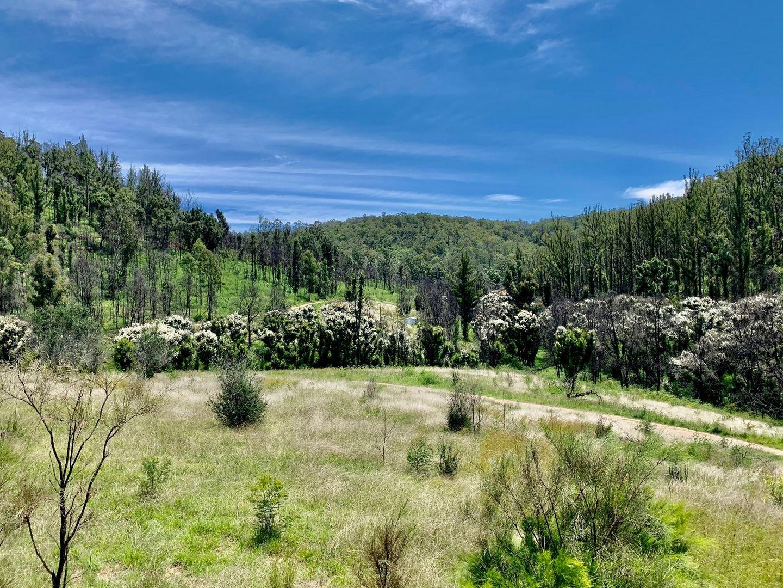267 Wallabadah Valley Road, Laguna NSW 2325, Image 0