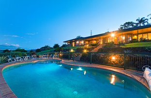Picture of 639 Trees Road, Tallebudgera QLD 4228