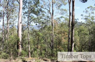 Picture of Proposed Lot 106 Mud Hut Road, Gloucester NSW 2422