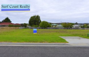 Picture of 8 Doepel Place, St Helens TAS 7216
