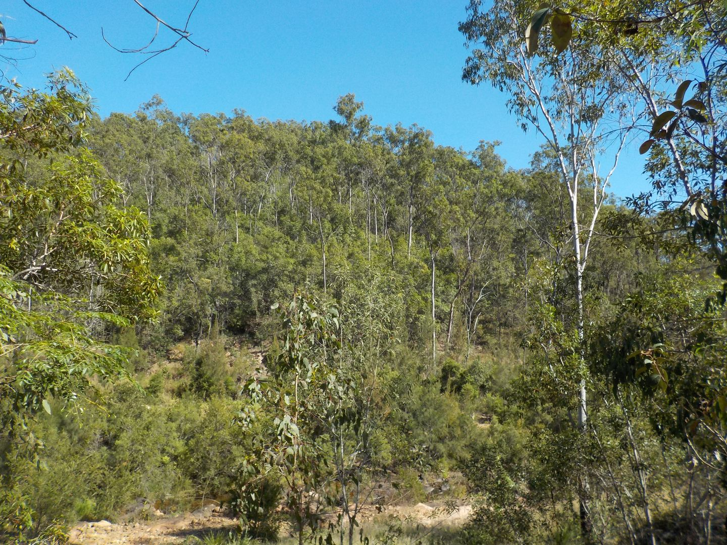 Mount Perry QLD 4671, Image 1