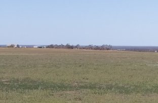 Picture of Pozzi Farm Swan Road and Esperance Coolgardie Hwy, Salmon Gums WA 6445
