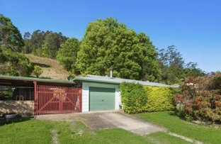 Picture of 1410 Numinbah Road, Chillingham NSW 2484
