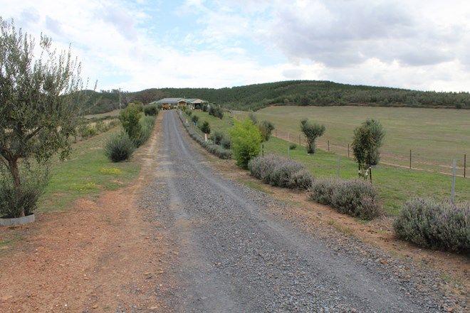 Picture of 3825 TUMBARUMBA ROAD, CARABOST NSW 2650