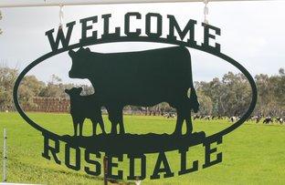"""Rosedale"" South Coree Road, Finley NSW 2713"