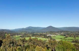 Picture of 140 Healesville - Yarra Glen Road, Healesville VIC 3777