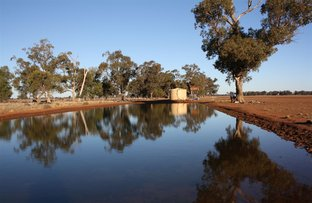 Picture of Narromine NSW 2821