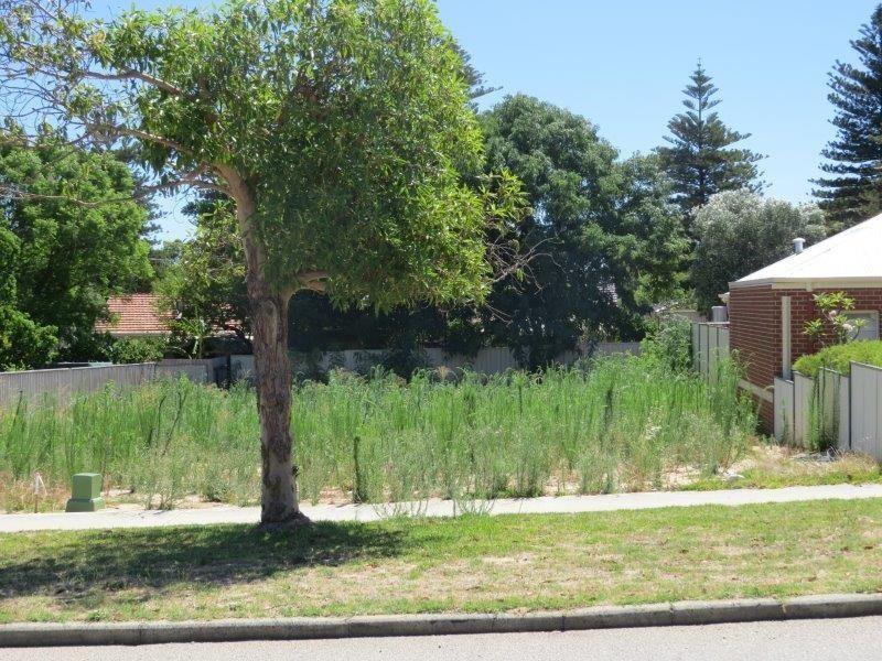 7b Cadd Street, Beaconsfield WA 6162, Image 0