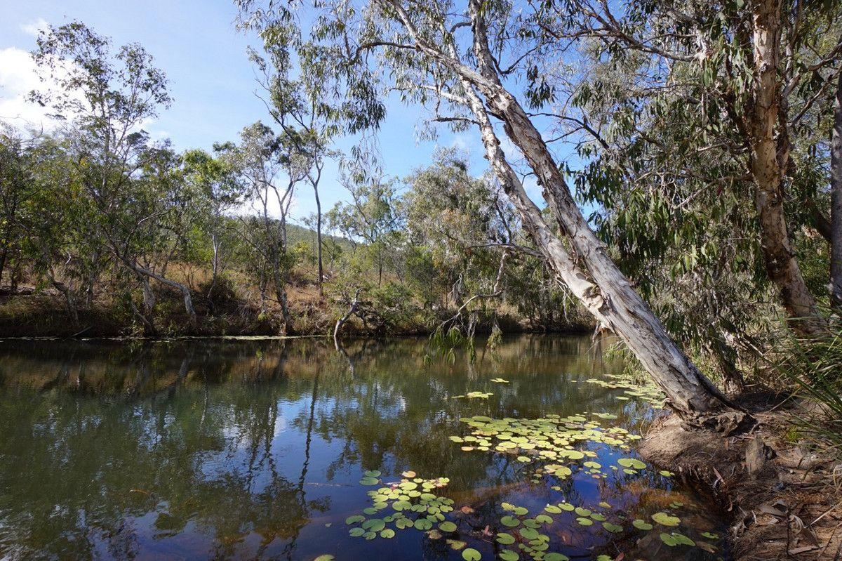 Lot 163 Collins Weir Road, Mutchilba QLD 4872, Image 0