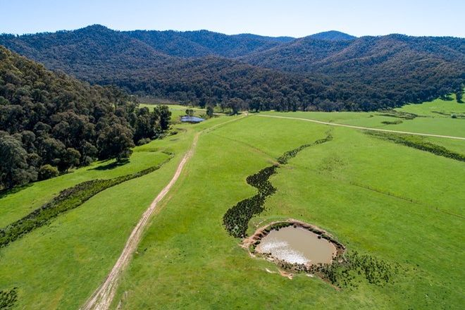 Picture of 1177 Callaghan Creek Road, MITTA MITTA VIC 3701