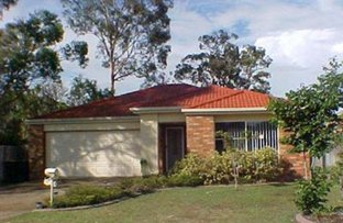 Picture of 19 Grevillea Place, Bridgeman Downs QLD 4035