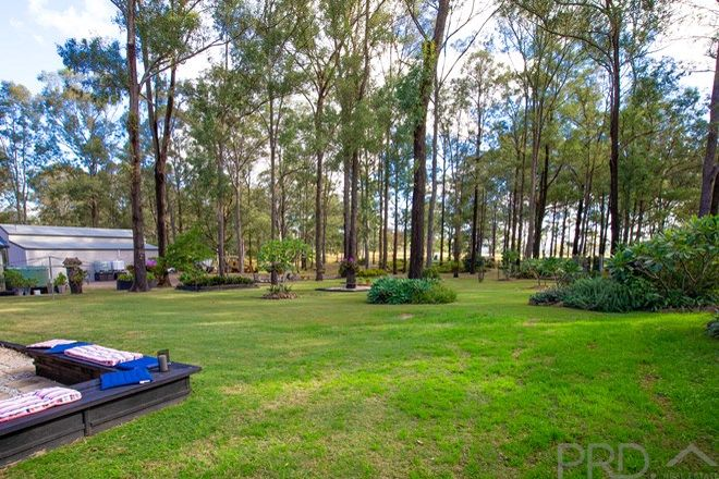 Picture of 193 Duns Creek Road, DUNS CREEK NSW 2321