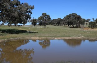 Picture of Lot 2, 98 Old Gap Road, Manton NSW 2582