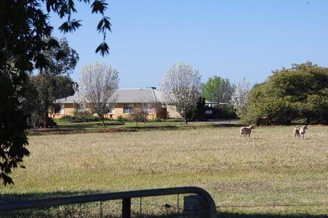 Picture of BEELBANGERA NSW 2680