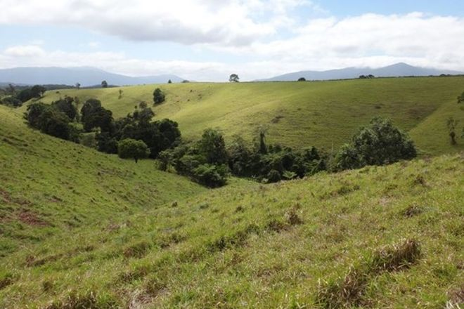 Picture of BUTCHERS CREEK QLD 4885