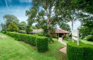 113 Old Coramba South Road, Dorrigo NSW 2453