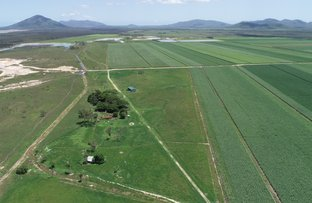Picture of 14654 BRUCE HIGHWAY, Gregory River QLD 4800