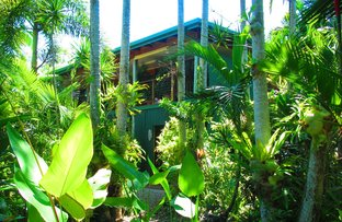 Picture of 41 Conch Street, Mission Beach QLD 4852