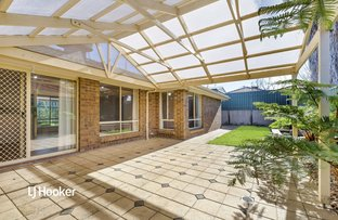 Picture of 11 Orange Grove, Walkley Heights SA 5098