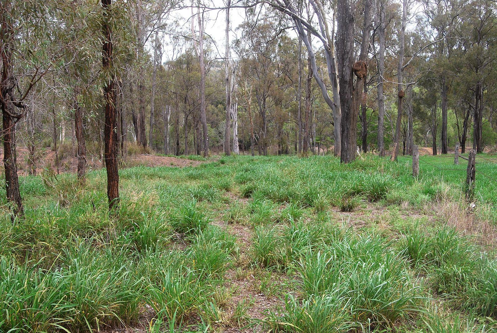27 Blenheim Road, Laidley Creek West QLD 4341, Image 0