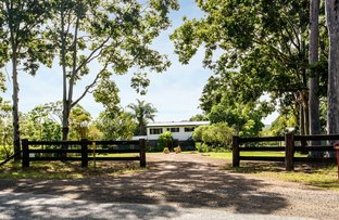 Picture of 477 Kenilworth Skyring Creek Road, Ridgewood QLD 4563