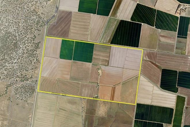 Picture of Farm 1934 Bringagee Road, WARRAWIDGEE NSW 2680