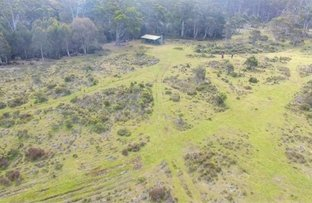 Picture of 1518 Arthurs Lake Road, Arthurs Lake TAS 7030