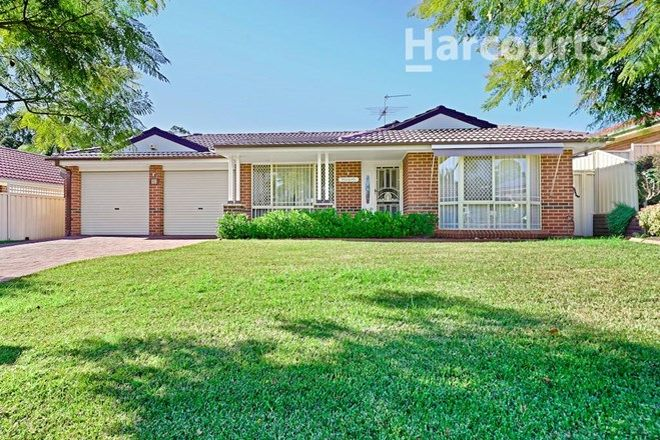 Picture of 25 Angophora Circuit, MOUNT ANNAN NSW 2567