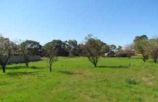 Picture of Lot 119 Langhorne Creek Road, Langhorne Creek SA 5255