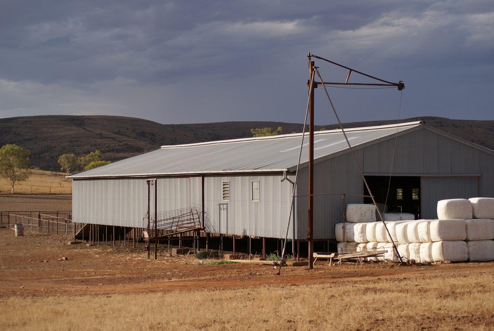 - Moolooloo Station, Moolooloo SA 5730, Image 2