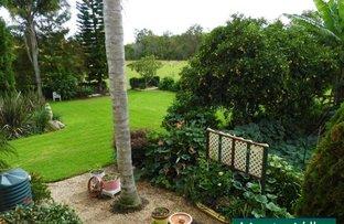 Picture of 1 Urara Lane, Taree NSW 2430