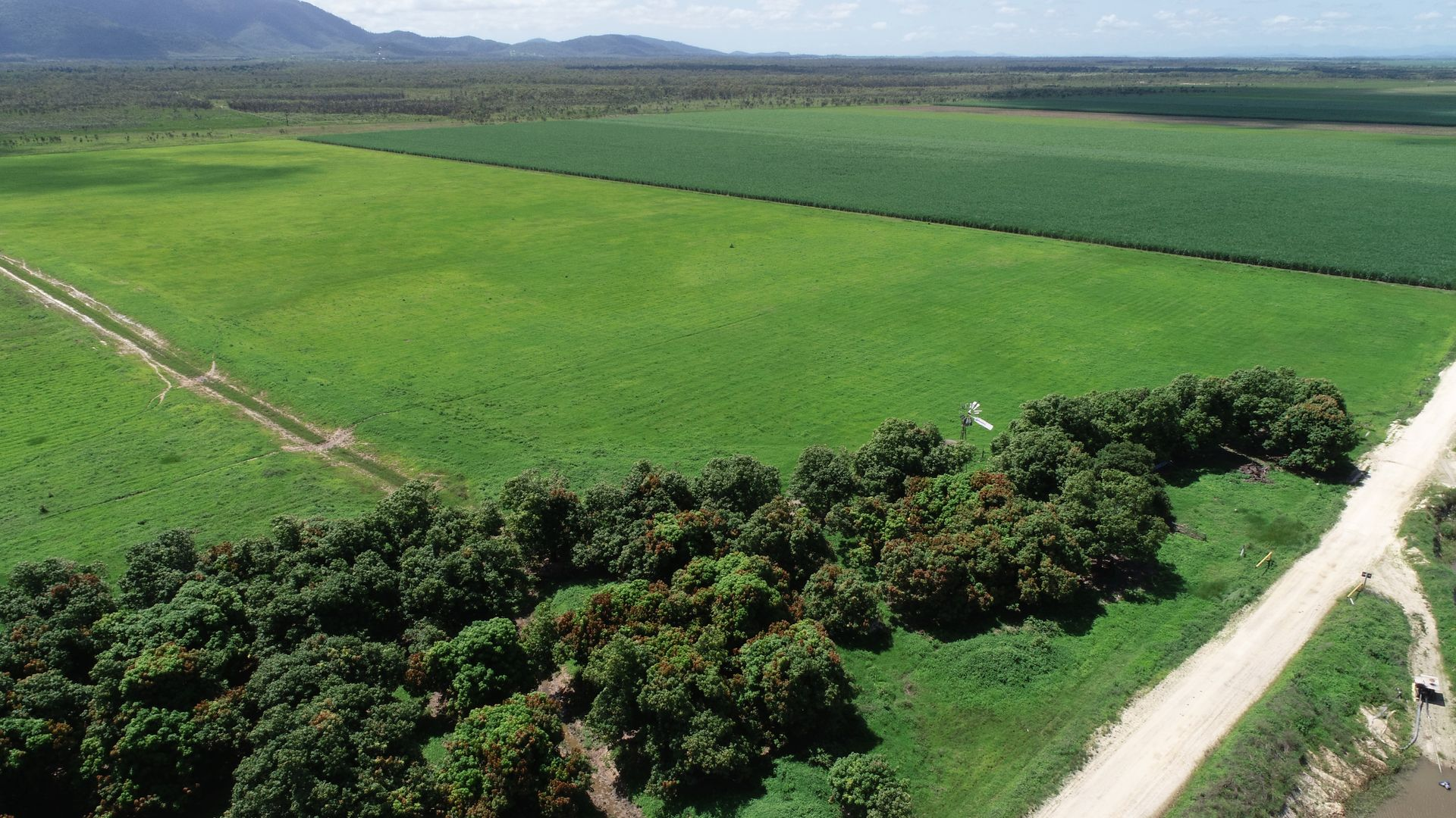 14654 BRUCE HIGHWAY, Gregory River QLD 4800, Image 2