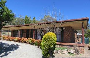 Picture of 319 Bourke Street, Glen Innes NSW 2370