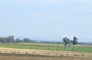 Mount Tarampa QLD 4311