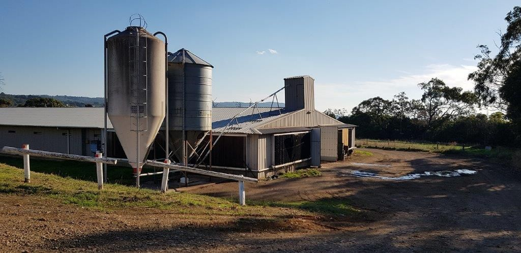 Red Hill VIC 3937, Image 0