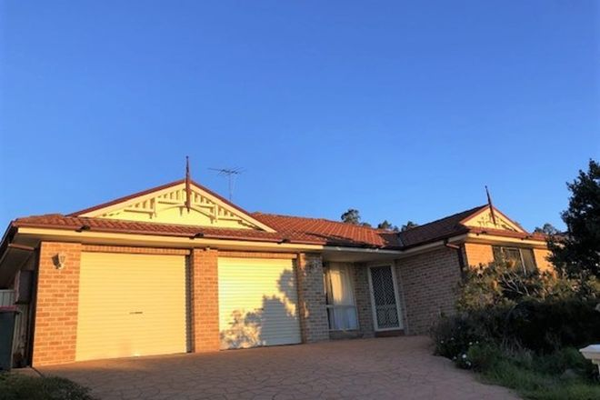 Picture of 6 Angophora Circuit, MOUNT ANNAN NSW 2567
