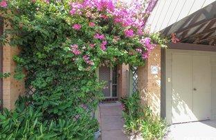 Picture of 14/26 Willcox Avenue, Singleton NSW 2330