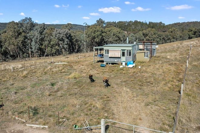 Picture of 181 MCFEETERS ROAD, BEECHWORTH VIC 3747