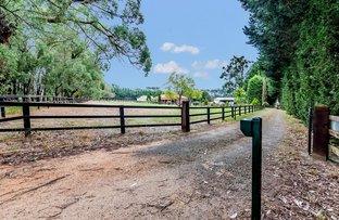 Picture of 153 Darnum Shady Creek Road, Darnum VIC 3822