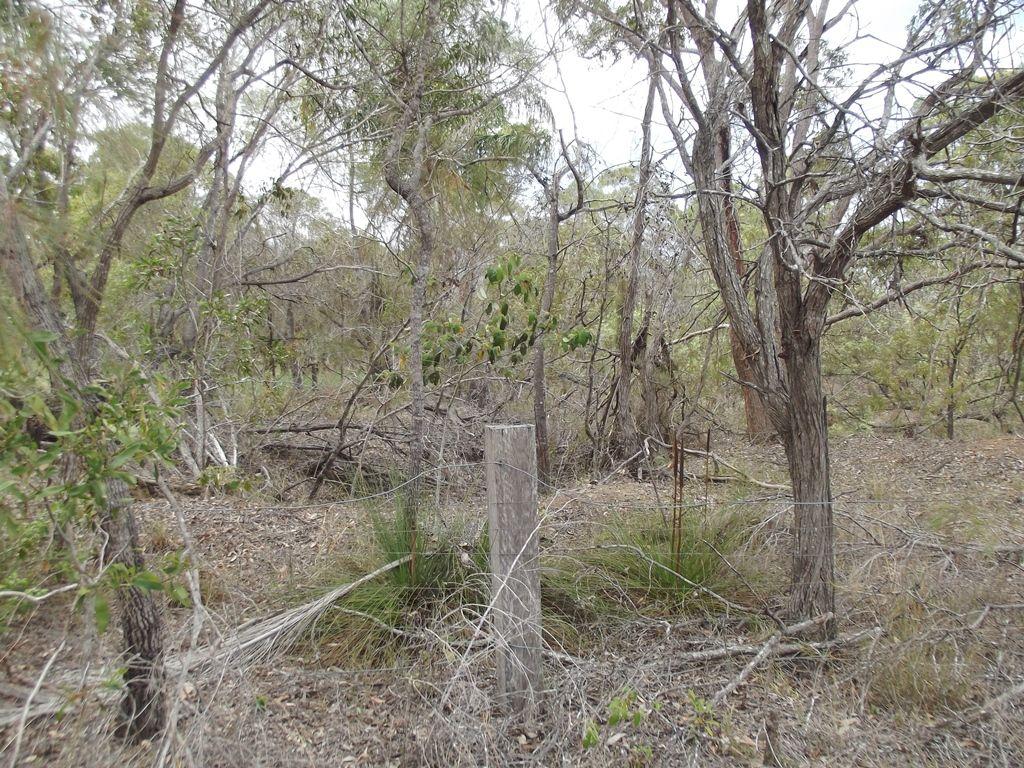 9-17 Keith St, Burrum River QLD 4659, Image 2
