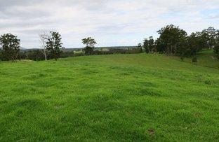 Congarinni North NSW 2447